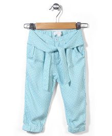 Pumpkin Patch All Over Printed Pants - Green