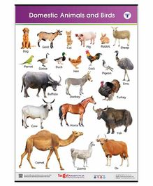 Target Publication Domestic Animals and Birds Educational Chart - English