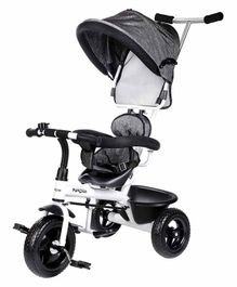 Little Pumpkin Classic T 30 Baby Tricycle with Canopy & Parental Control Handle - Grey