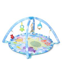 Winfun Polar Fiesta Infant Play Gym - Blue & White