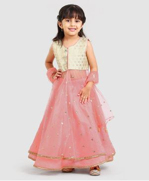 Saka Designs Sleeveless Brocade Choli And Lehenga With Dupatta - Peach Golden