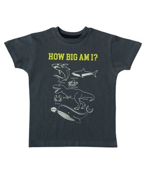 Kid Studio Creatures Printed Half Sleeves T-Shirt - Grey
