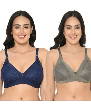 Curvy Love Solid Pack Of 2 Bra - Blue & Olive