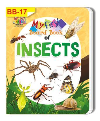 Insects Themed Board Book - English