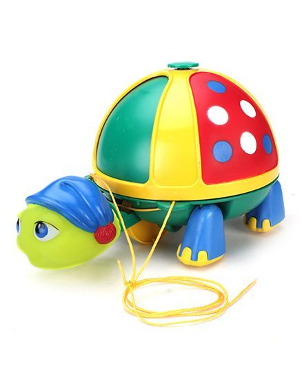 Giggles Roly Poly Turtle Green Online India, Buy Pull Along Toys for (12-24  Months) at FirstCry com - 362