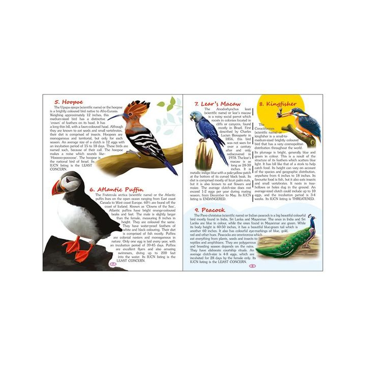 Exotic Birds & Amphibians And Reptiles Encyclopedia Set of 2 English Online  in India, Buy at Best Price from Firstcry com - 2186352